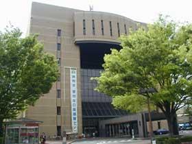 茶色的政府大楼大楼和正门入口的光叶榉树的树的照片